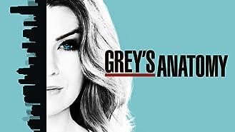 Grey's Anatomy Season 14