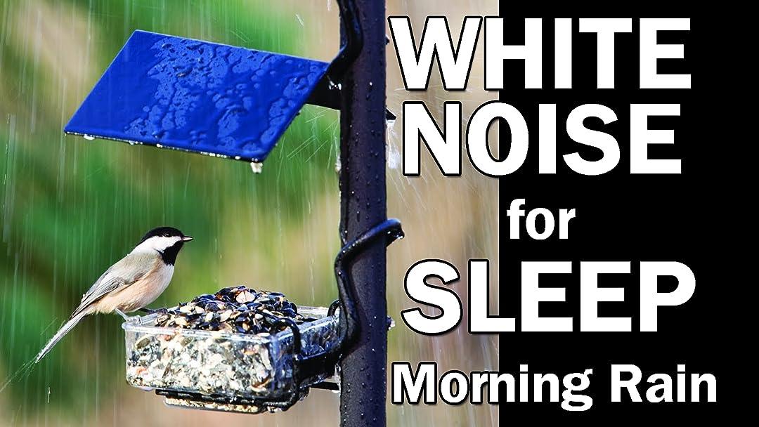 Amazon com: Watch Morning Rain Storm with Birds Singing