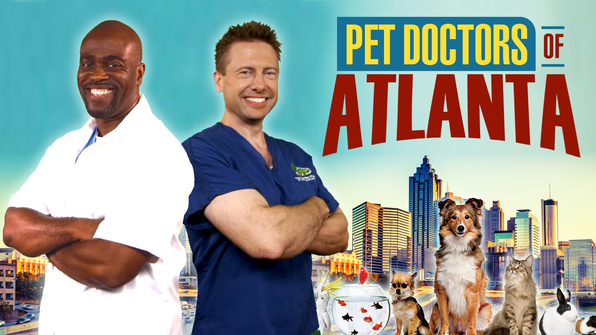 Pet Doctors of Atlanta