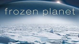 Frozen Planet Season 1