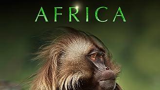 Africa Season 1