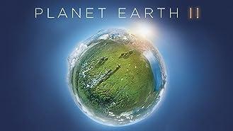 Planet Earth II (4K UHD)