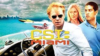 CSI: Miami, Season 8