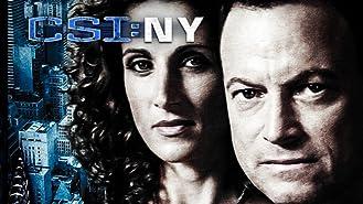 CSI: NY, Season 01