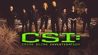 CSI: Crime Scene Investigation, Season 10