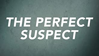 The Perfect Suspect Season 1