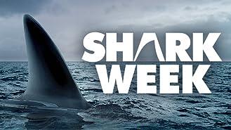 Shark Week Season 2007