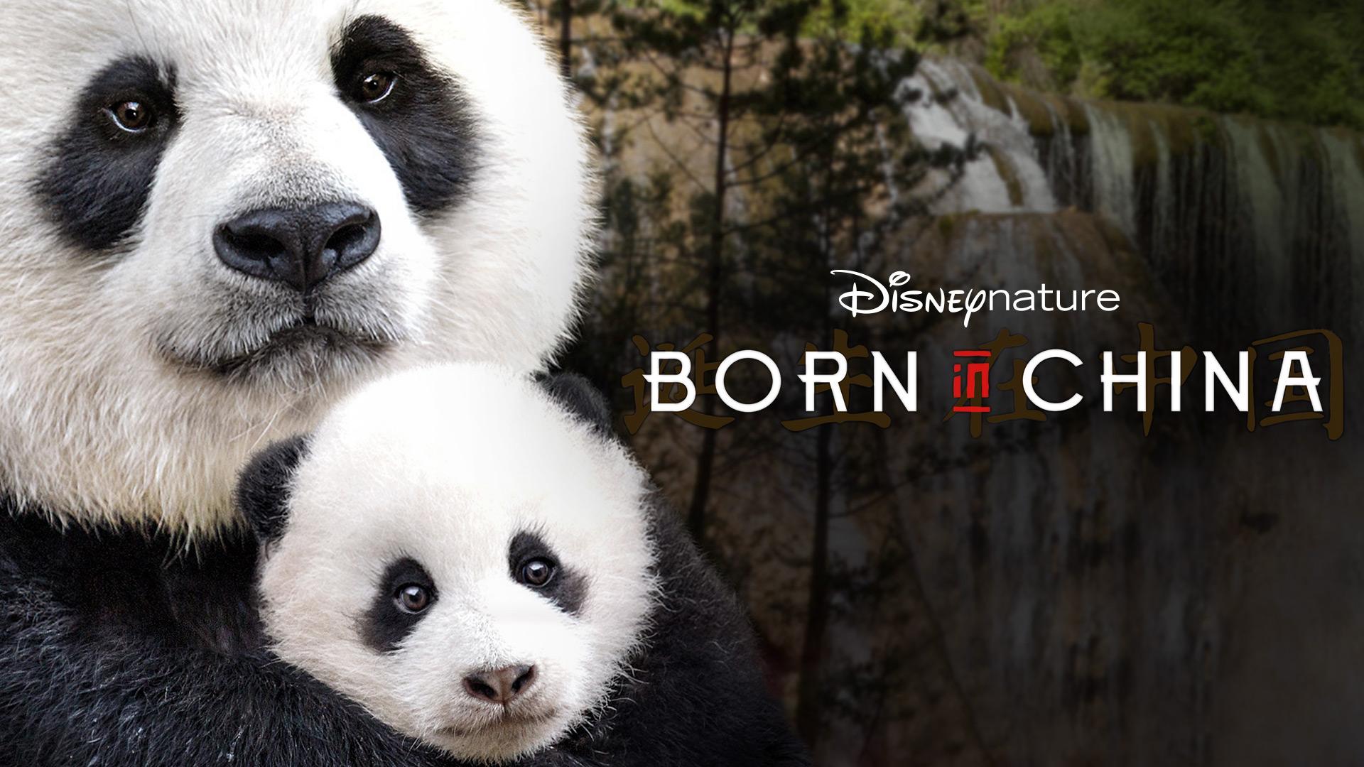 Disneynature: Born in China (Theatrical Version)