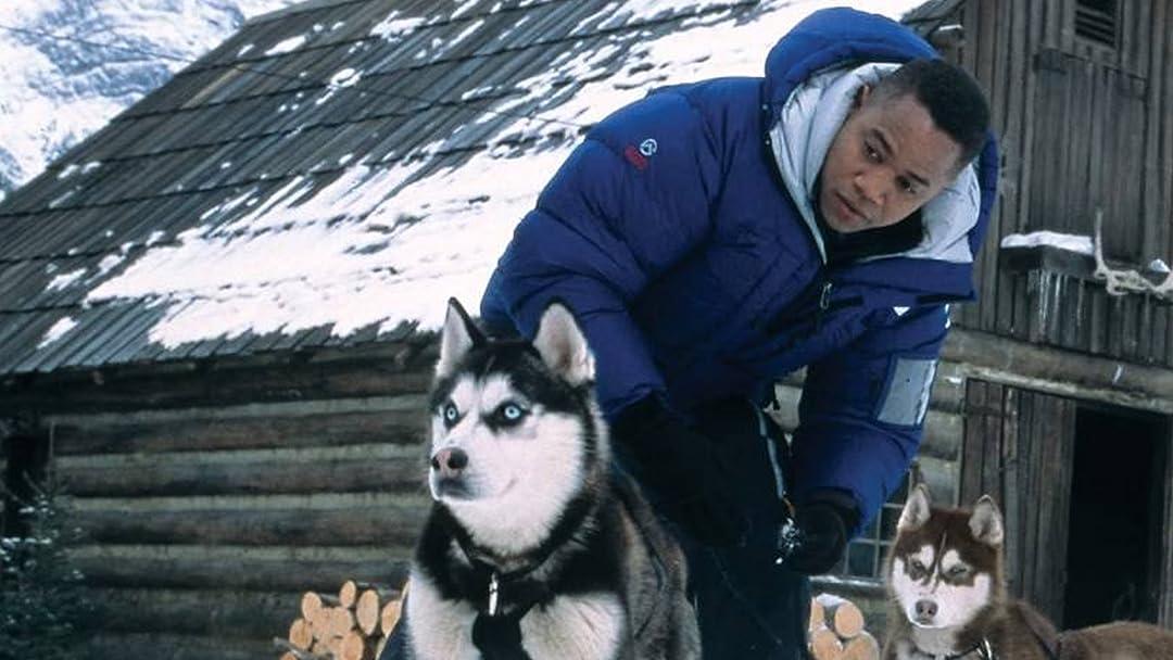 Amazon.com: Watch Snow Dogs   Prime Video