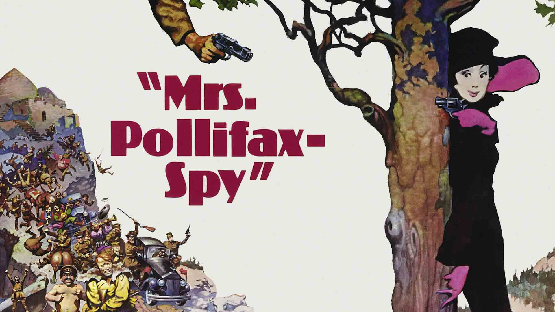 Mrs Pollifax Spy