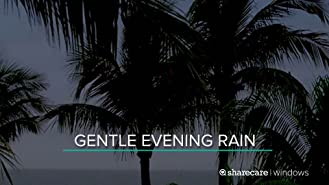 Gentle evening rain