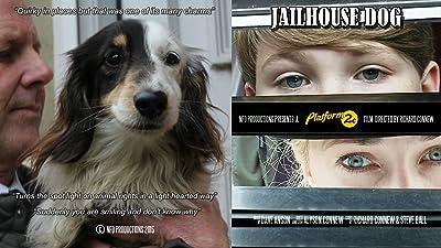 Jailhouse Dog