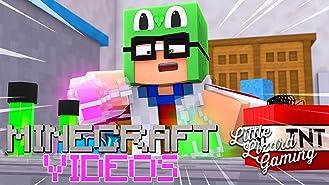 Clip: Little Lizard Gaming Minecraft Videos