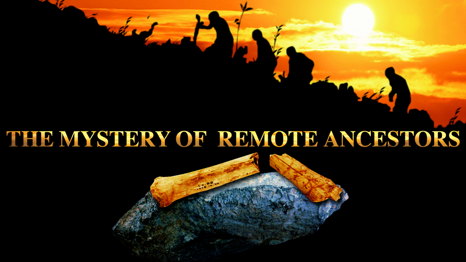 The Mystery of Remote Ancestors
