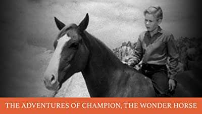 The Adventures of Champion, The Wonder Horse
