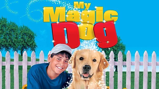 My Magic Dog
