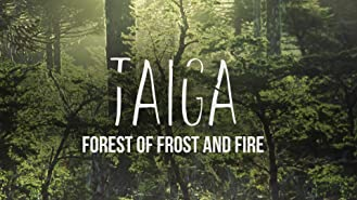 Taiga: Forest of Frost and Fire