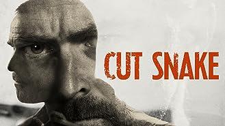 Cut Snake