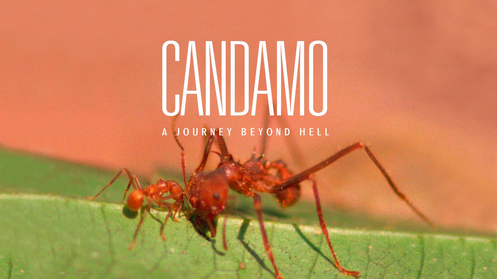 Candamo: Journey Beyond Hell