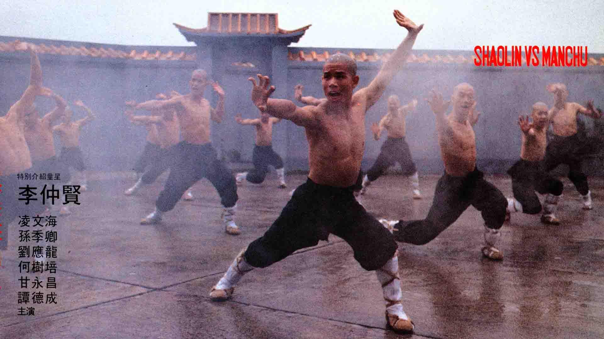Shaolin vs Manchu