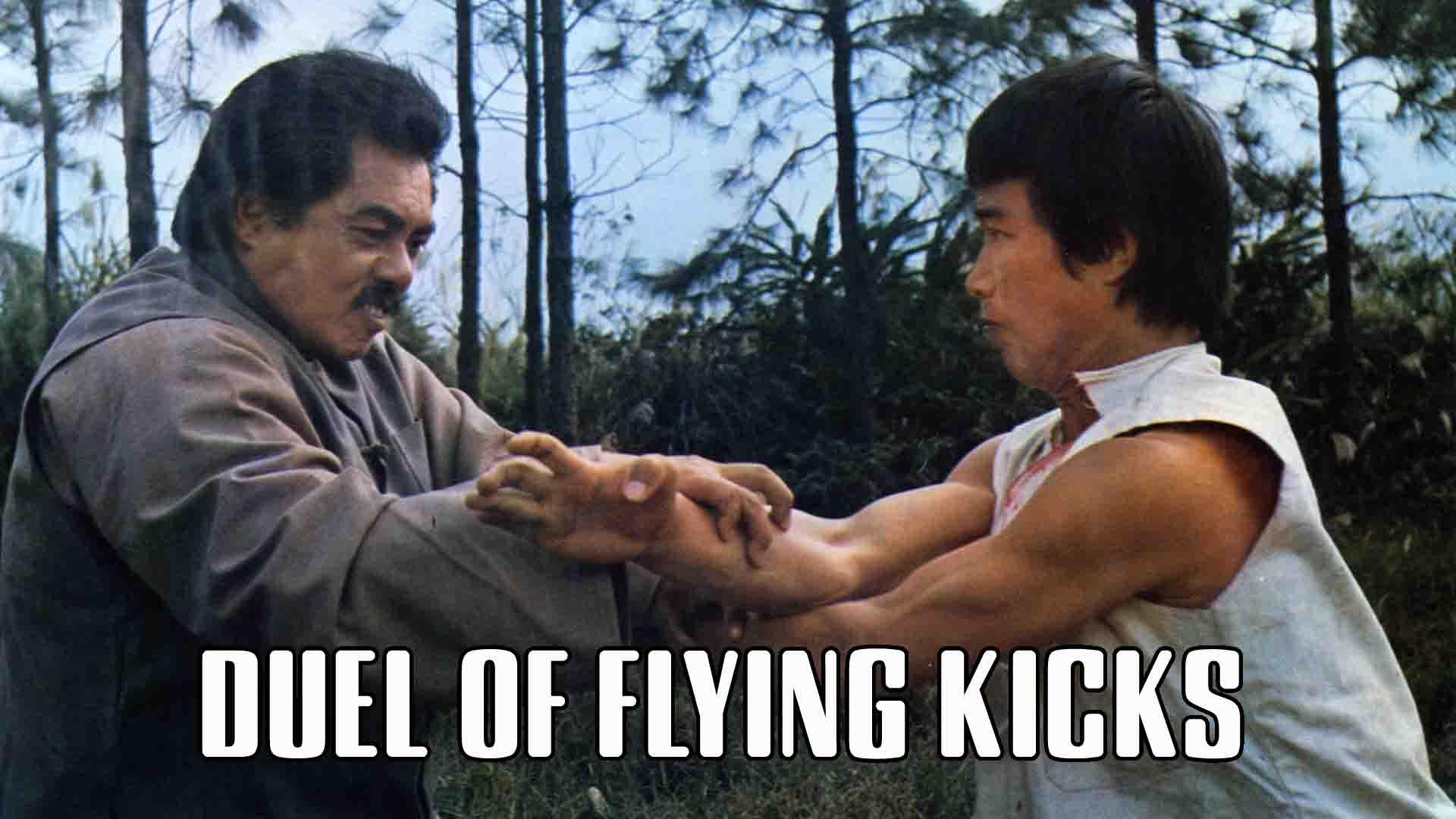 Duel Of Flying Kicks
