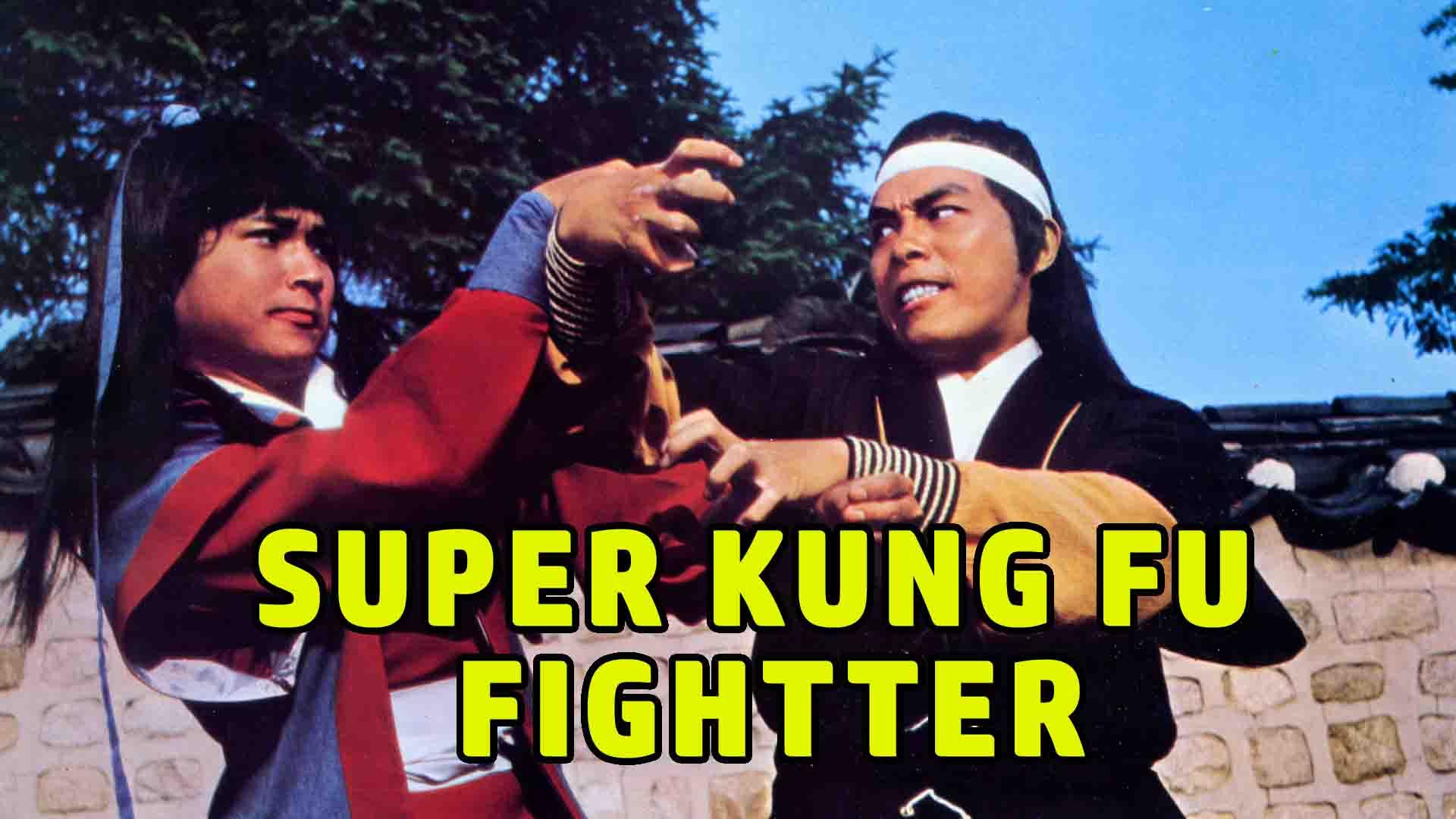 Super Kung Fu Fighter