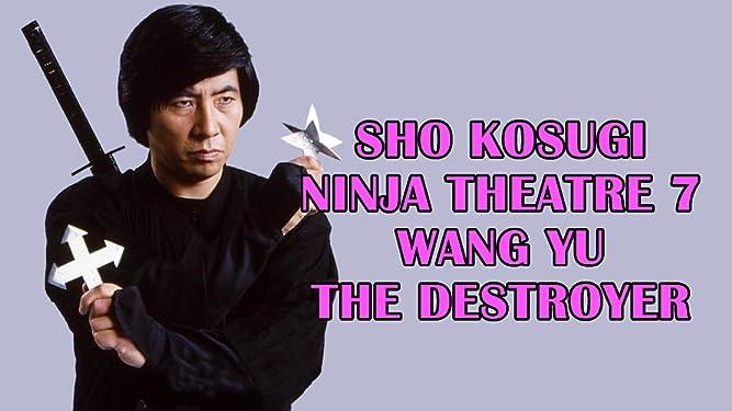 Sho Kosugi Ninja Theater 7 Wang Yu The Destroyer