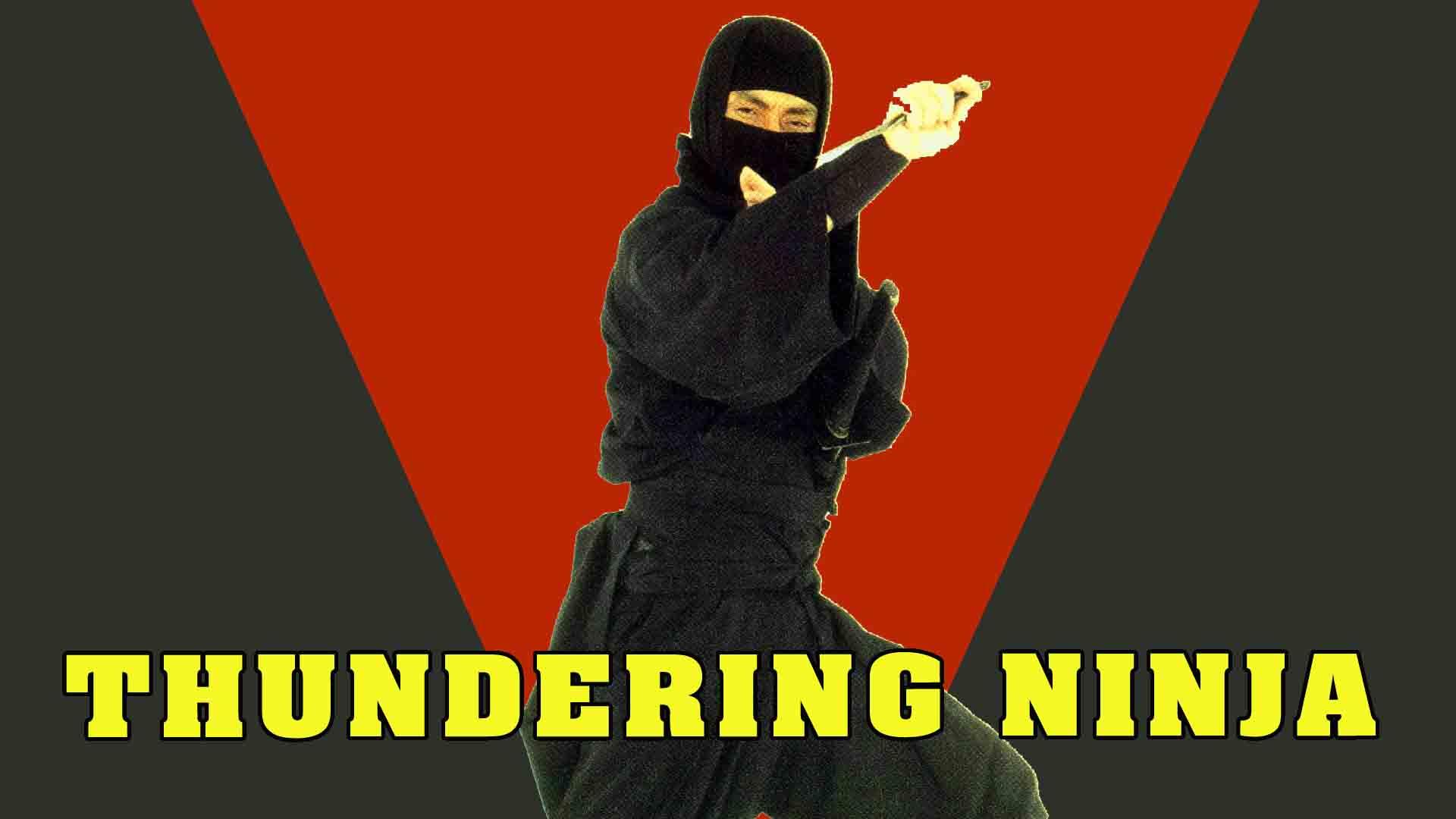 Watch Cobra Against Ninja | Prime Video