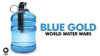 Blue Gold: World Water Wars