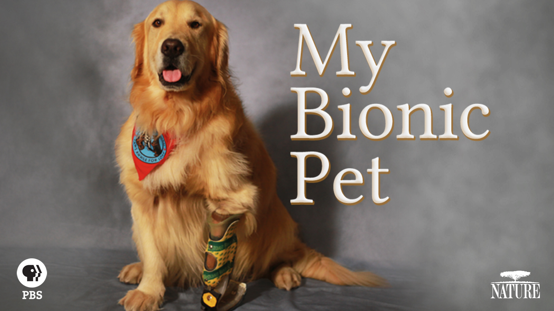 My Bionic Pet