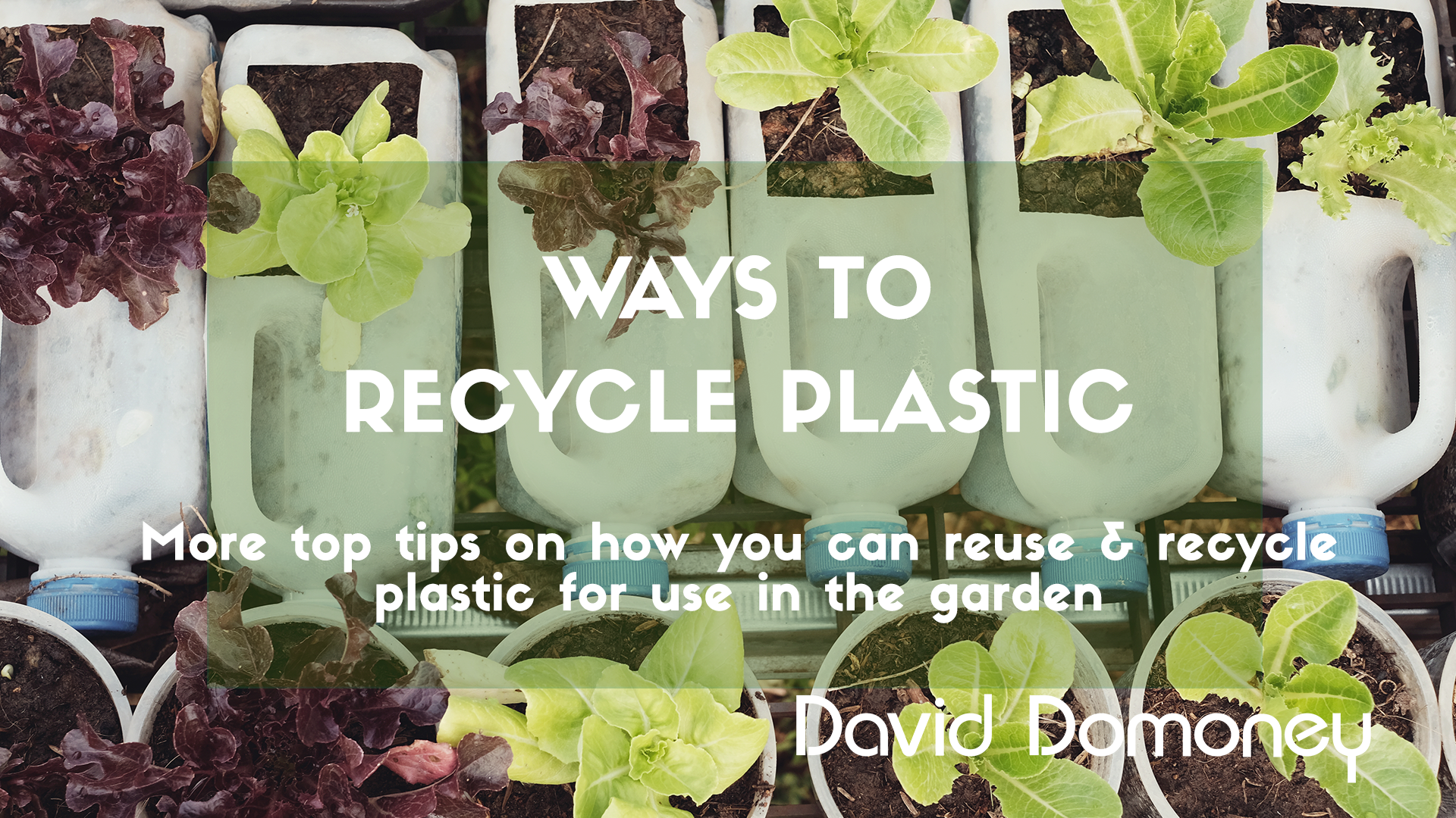 More Ways to Recycle Plastic in the Garden