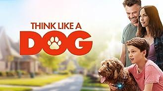 Think Like a Dog (4K UHD)