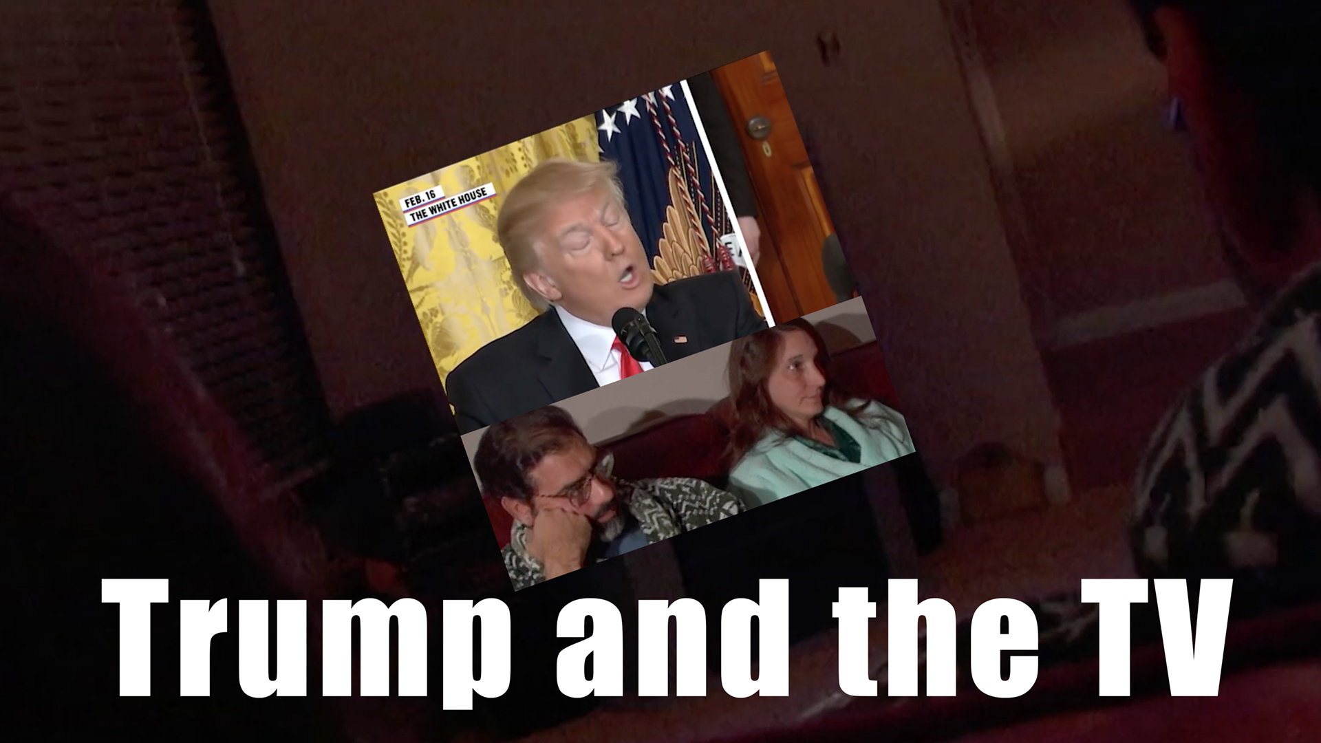 Trump and the TV