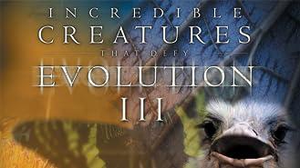 Incredible Creatures That Defy Evolution III