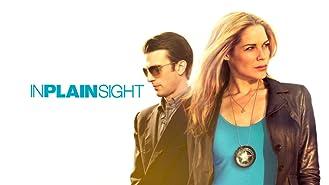 In Plain Sight Season 3