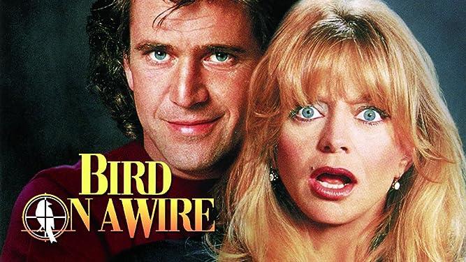 bird on a wire movie watch online free