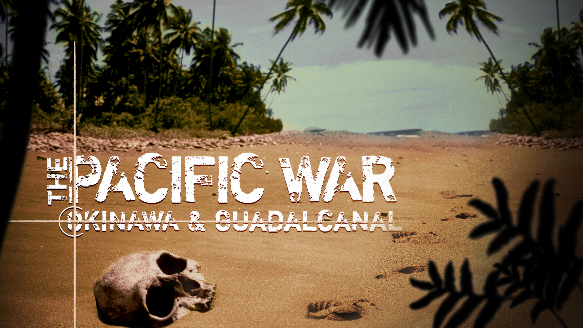 The Pacific War: Okinawa and Guadalcanal