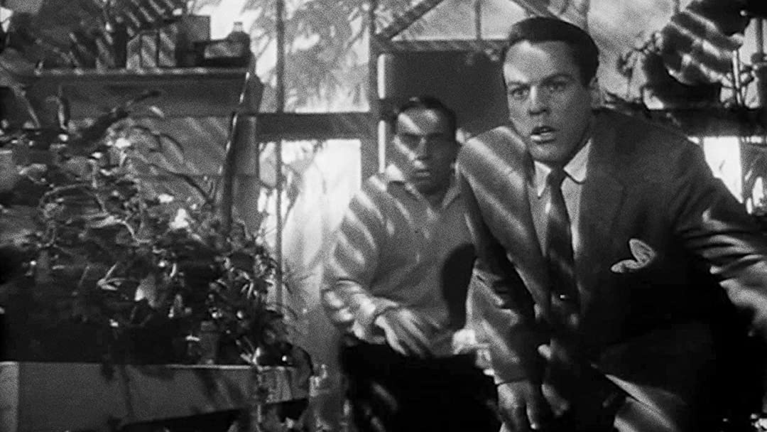 Watch Invasion of the Body Snatchers | Prime Video