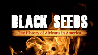 Black Seeds: The History of Africans in America