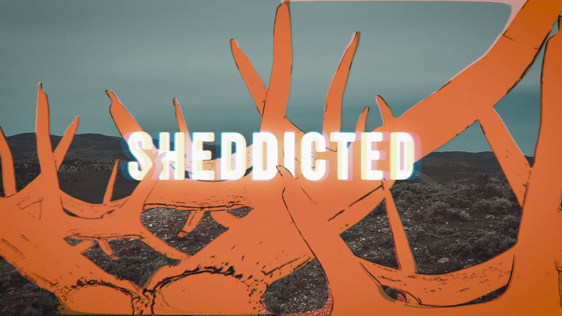 Sheddicted