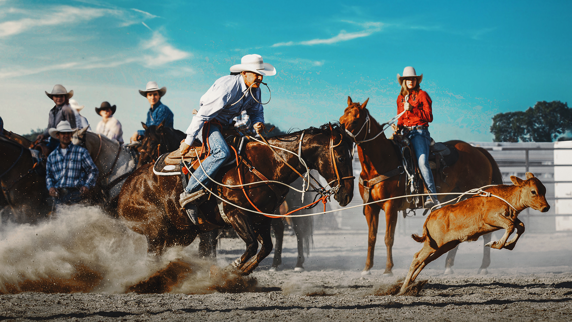 Watch The Cowboy Way Prime Video