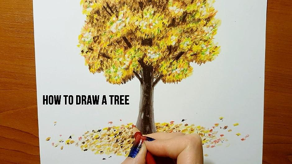 amazon com how to draw a tree with colored pencils jasmina susak