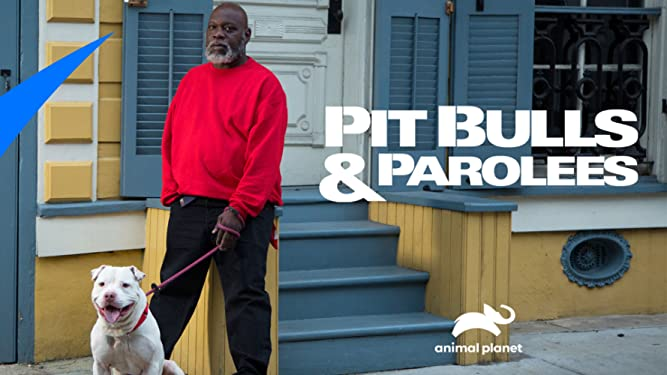 Meet The Women Of Pit Bull And Parolees Dnews Discovery