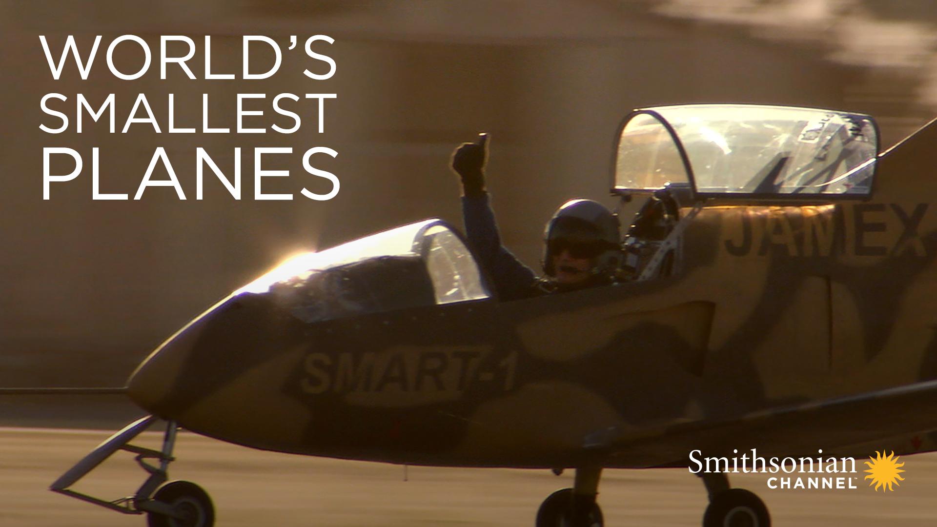 World's Smallest Planes