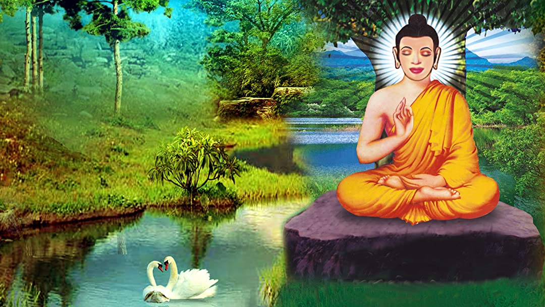 Watch Buddha (Hindi) | Prime Video