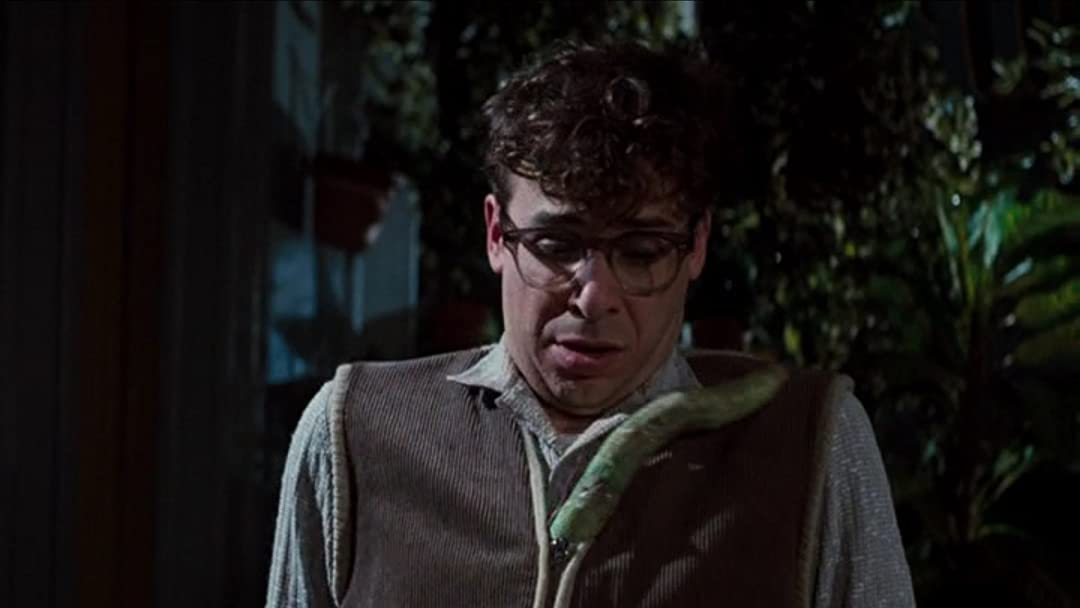 Watch Little Shop Of Horrors 1986 Prime Video