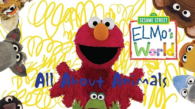 Watch Sesame Street Elmo S World All About Animals Prime