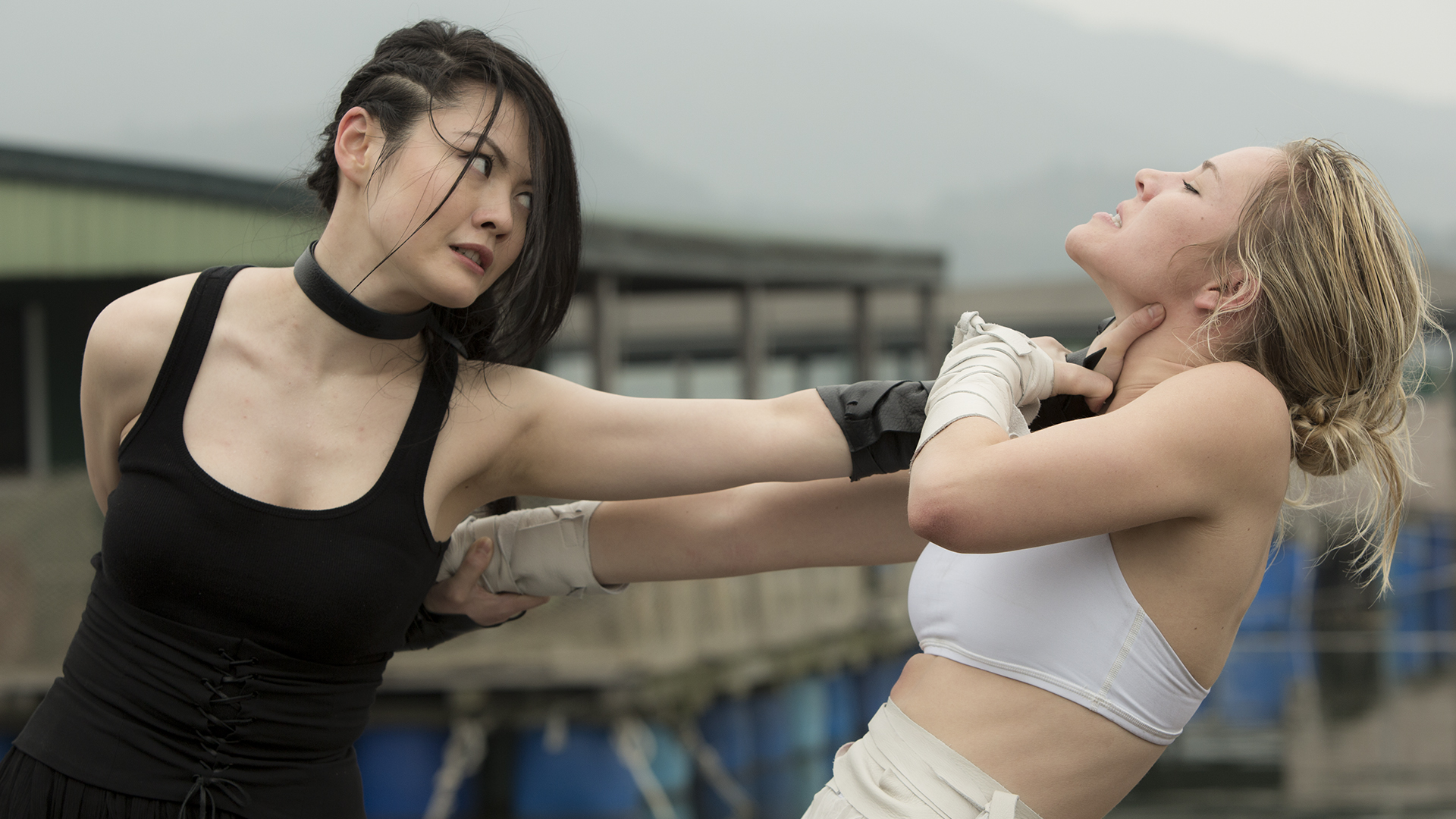 lady bloodfight full movie watch online free
