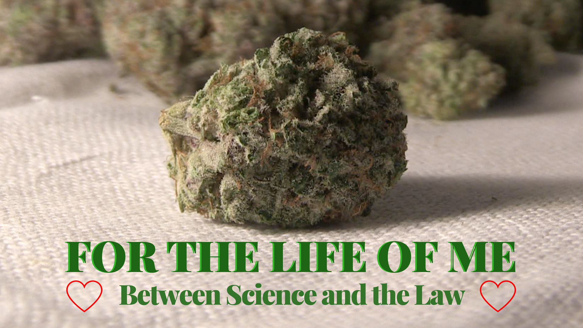 For the Life of Me - Between Science and the Law