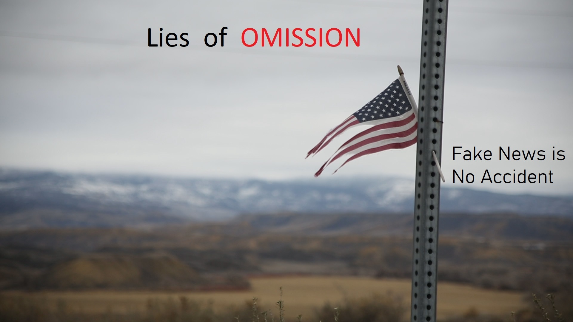 Lies of Omission